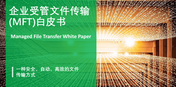 《企业受管文件传输白皮书》<br /> 文件传输现状·MFT实施·未来前景